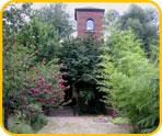 Marienkirche zu Höchst im Odenwald - Bild 4
